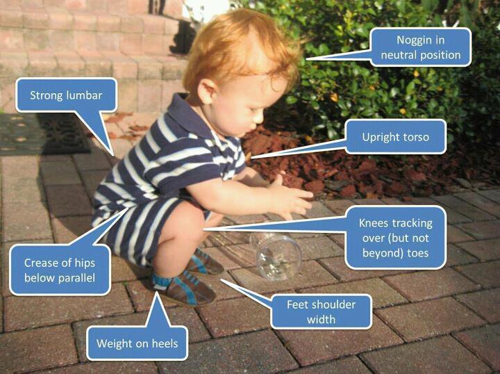 the-5-best-squat-exercises-anderson-squat